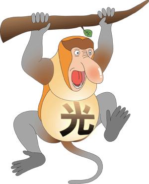 光回線案内猿シャー